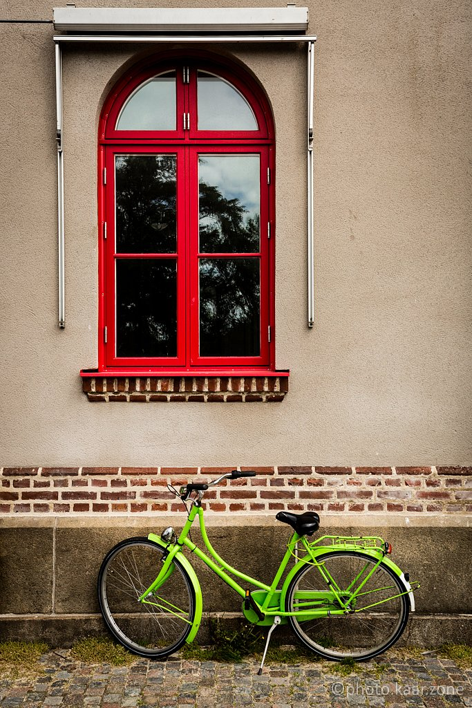 Green Bicycles Only